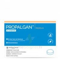 Aragan Propalgan Comprimés Orodispersibles Adulte B/20 à BOUILLARGUES