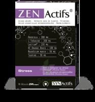 Synactifs Zenactifs Gélules B/30 à BOUILLARGUES