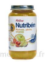 Nutriben Potitos Fruits, Pot 250 G à BOUILLARGUES