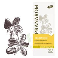 Pranarom Huile Végétale Bio Calophylle 50ml à BOUILLARGUES