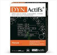 Synactifs Dynactifs Gélules B/30 à BOUILLARGUES