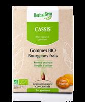 Herbalgem Gomme Cassis Bio B/24 à BOUILLARGUES