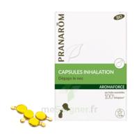 Aromaforce Caps Inhalation Bio B/15 + Inhalateur à BOUILLARGUES