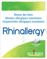 Boiron Rhinallergy Comprimés B/40 à BOUILLARGUES